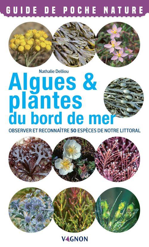 Algues & plantes du bord de mer ; observer et reconnaître 50 espèces de notre littoral