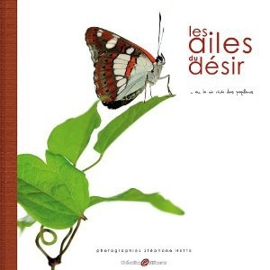 les ailes du désir... ou la vie rêvée des papillons