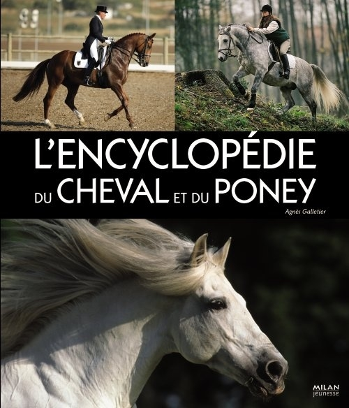 Encyclopedie Du Cheval Et Du Poney
