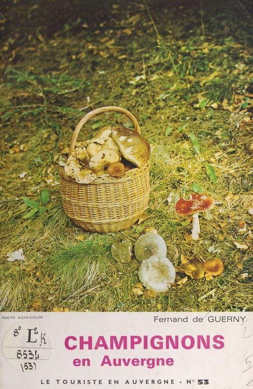 Les champignons en Auvergne