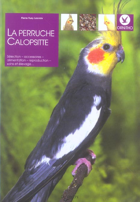 Perruche Calopsitte (La)