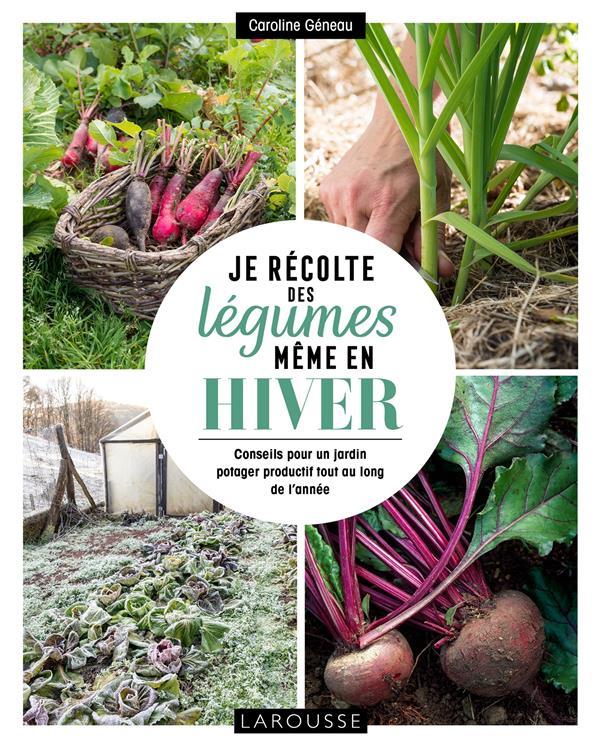 Je récolte des légumes, même en hiver ; conseils pour un jardin potager productif tout au long de l'année