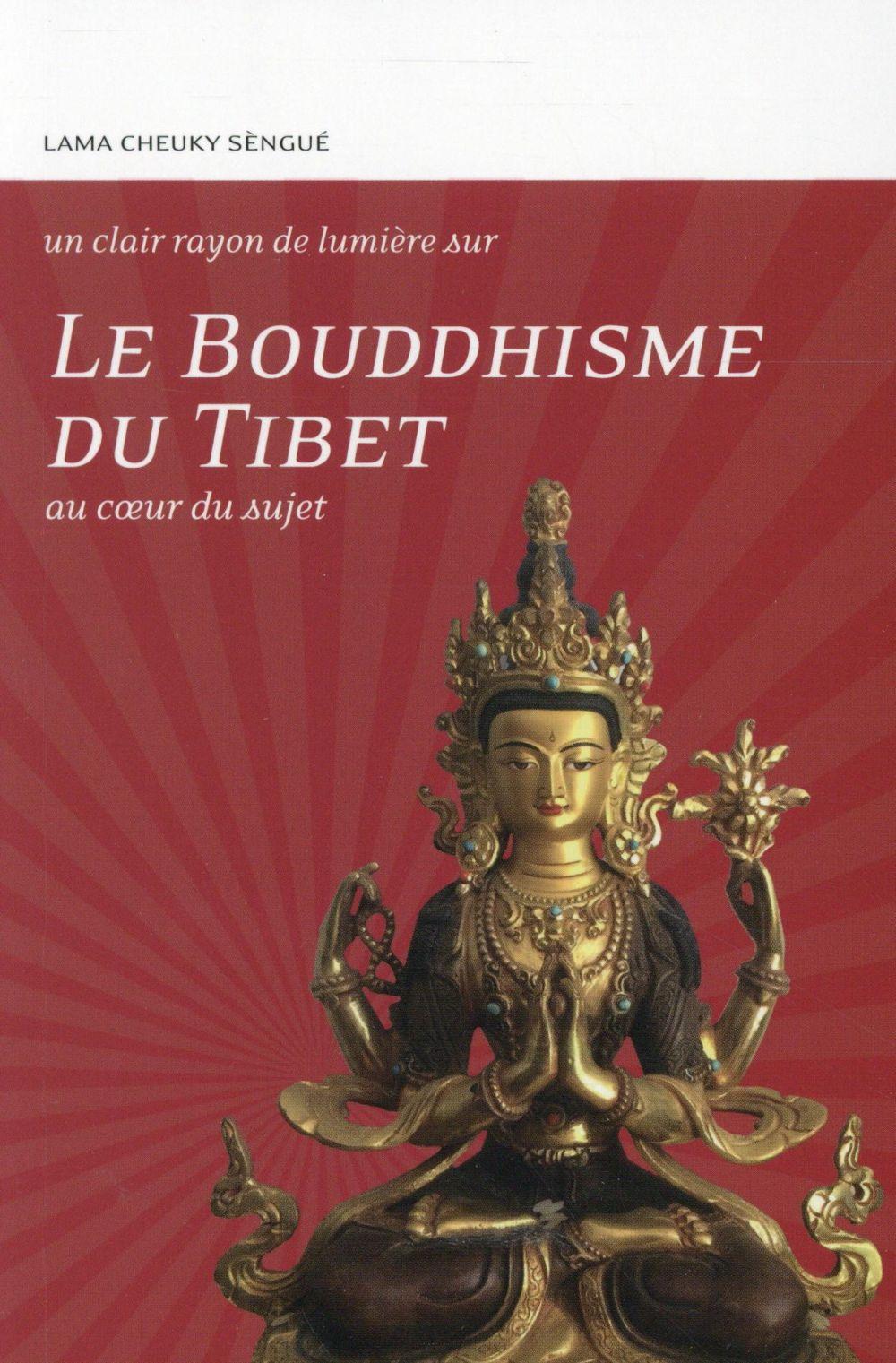 Le bouddhisme du Tibet ; au coeur du sujet