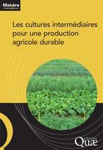 Vente Livre Numérique : Les cultures intermédiaires pour une production agricole durable  - Ouvrage COLLECTIF