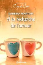 Vente EBooks : A la recherche de l'amour  - Sandra Marton