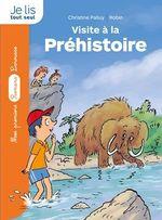 Vente EBooks : La pierre du temps : Visite à la préhistoire  - Christine Palluy