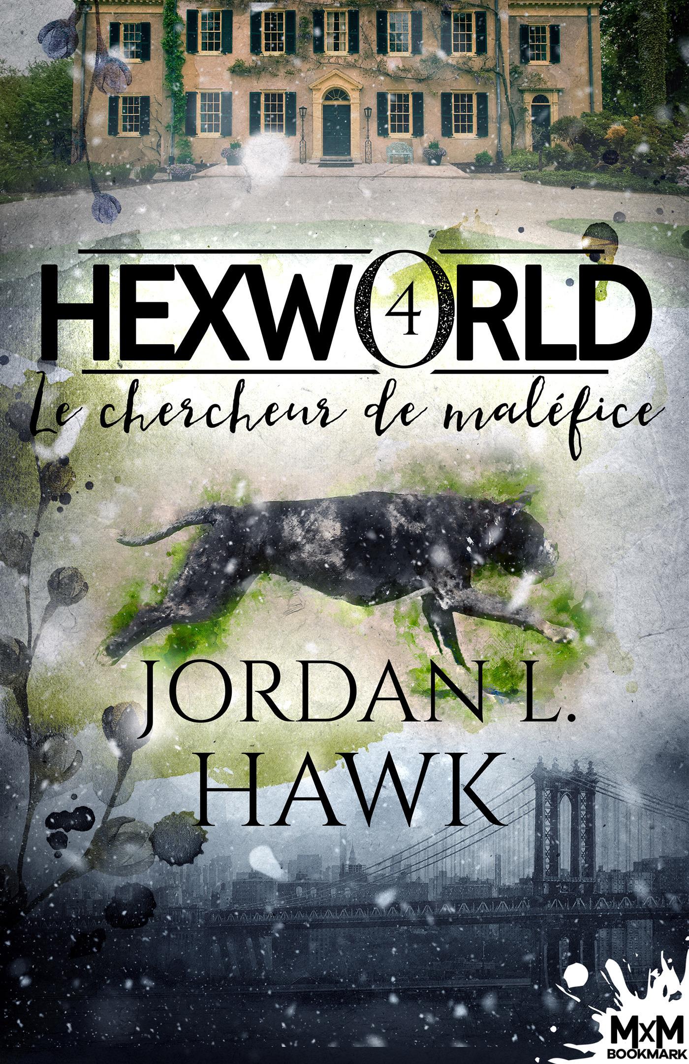Hexworld t.4 ; le chercheur de maléfice
