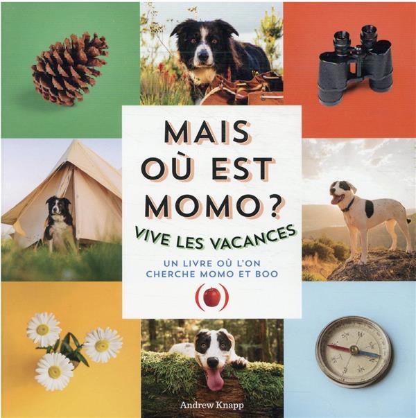 Mais où est Momo ? vive les vacances ! un livre où l'on cherche Momo et Boo