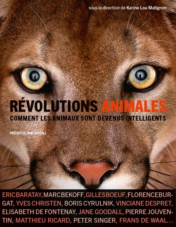 Révolutions animales ; comment les animaux sont devenus intelligents