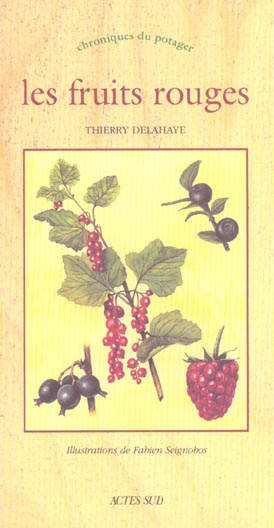 Fruits rouges (les) - chroniques du potager