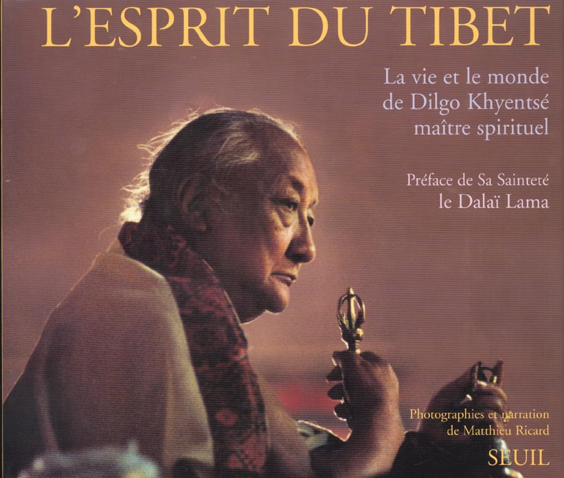 Esprit du tibet. la vie et le monde de dilgo khyentse, maitre spirituel (l')