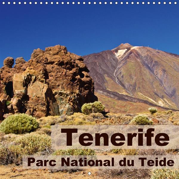 Tenerife ; parc national du Teide ; calendrier mural 2017 300 300 mm square