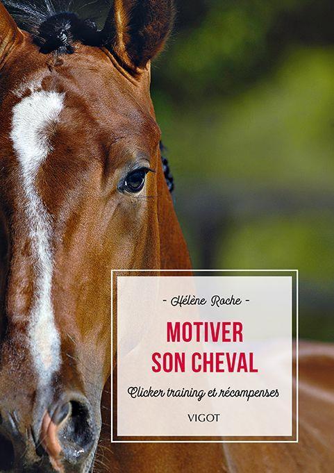 Motiver son cheval : clicker training et récompenses