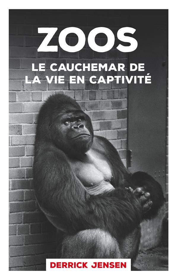 Zoos le cauchemar de la vie en captivité