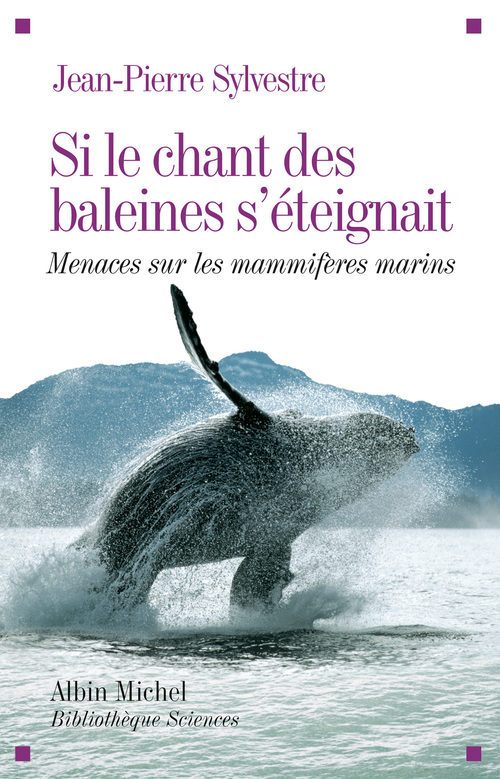 si le chant des baleine s'éteignait ; menaces sur les mammifères marins