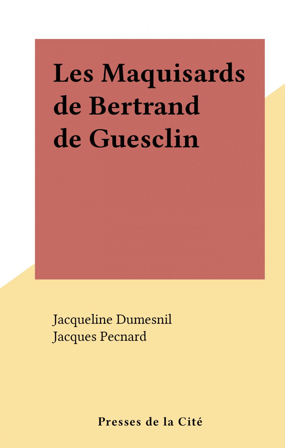 Les Maquisards de Bertrand de Guesclin