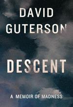 Descent  - David Guterson