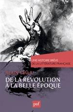 Vente EBooks : De la Révolution à la Belle Époque. Une histoire brève de la littérature française  - Alain Viala