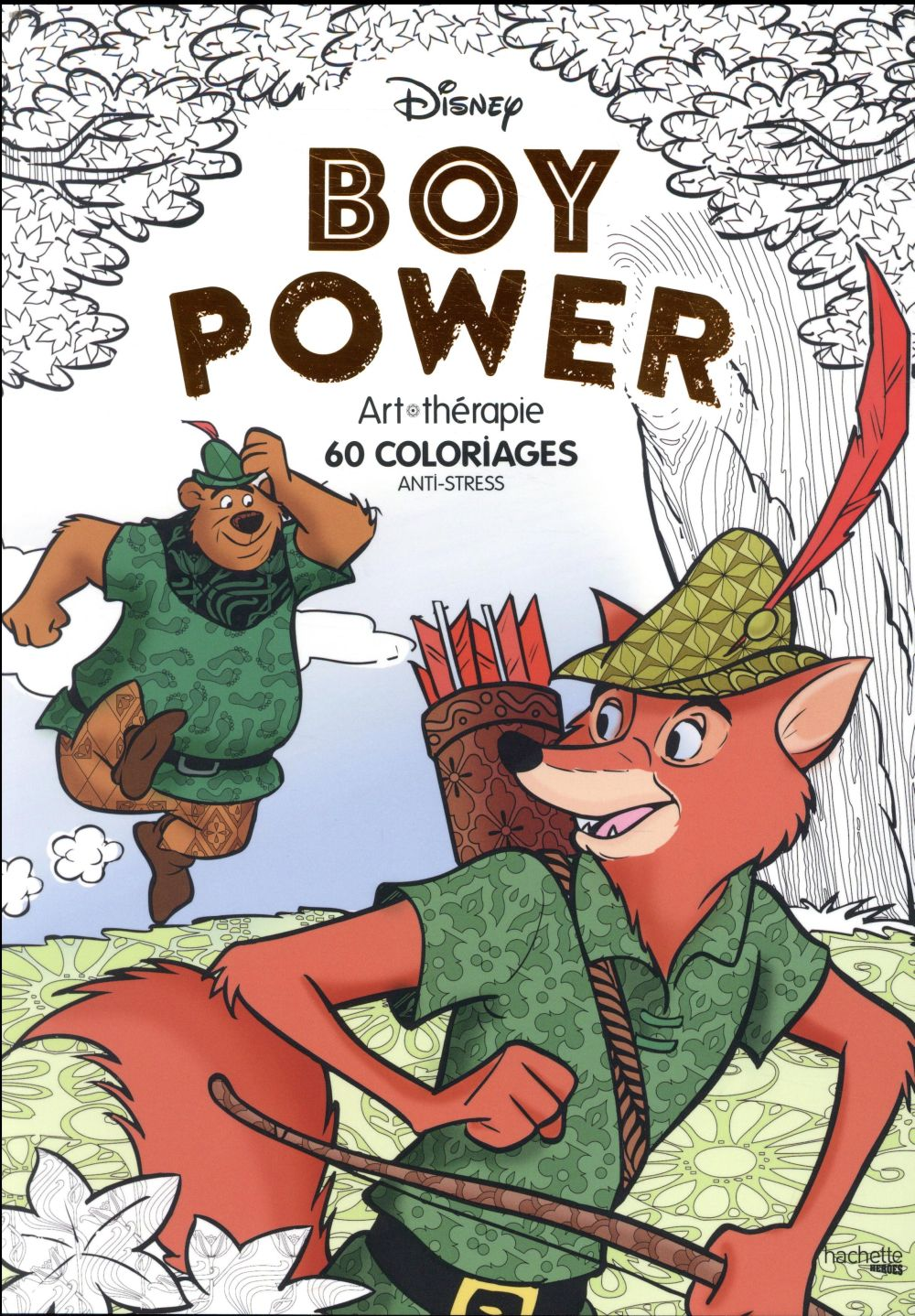 Coloriage Bestiaire Disney.Disney Boy Power Jean Luc Guerin Hachette Pratique Papeterie
