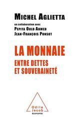 Vente Livre Numérique : La Monnaie entre dettes et souveraineté  - Michel Aglietta - Pepita Ould-Ahmed - Jean-François PONSOT