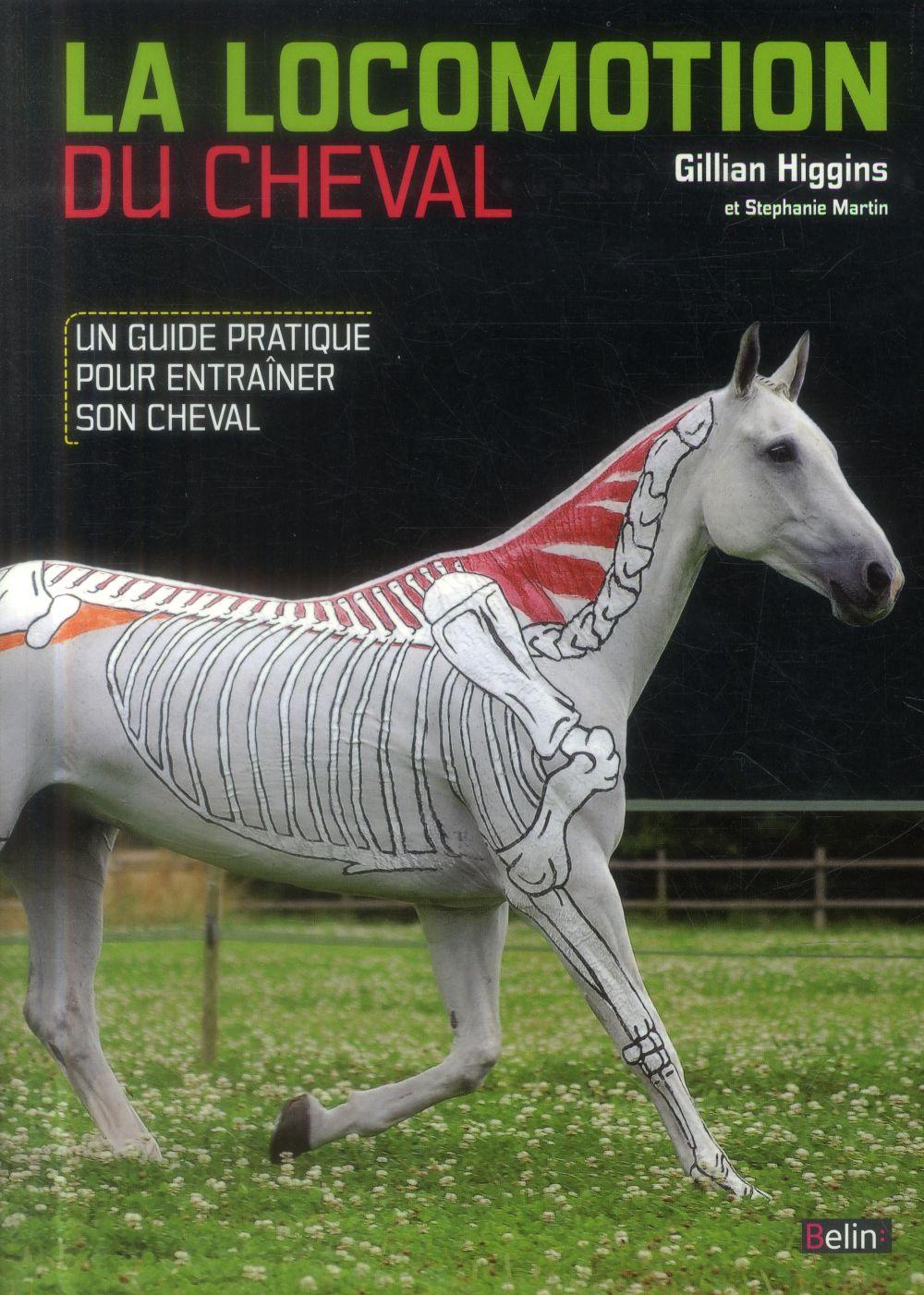 La locomotion du cheval ; un guide pratique pour entraîner son cheval