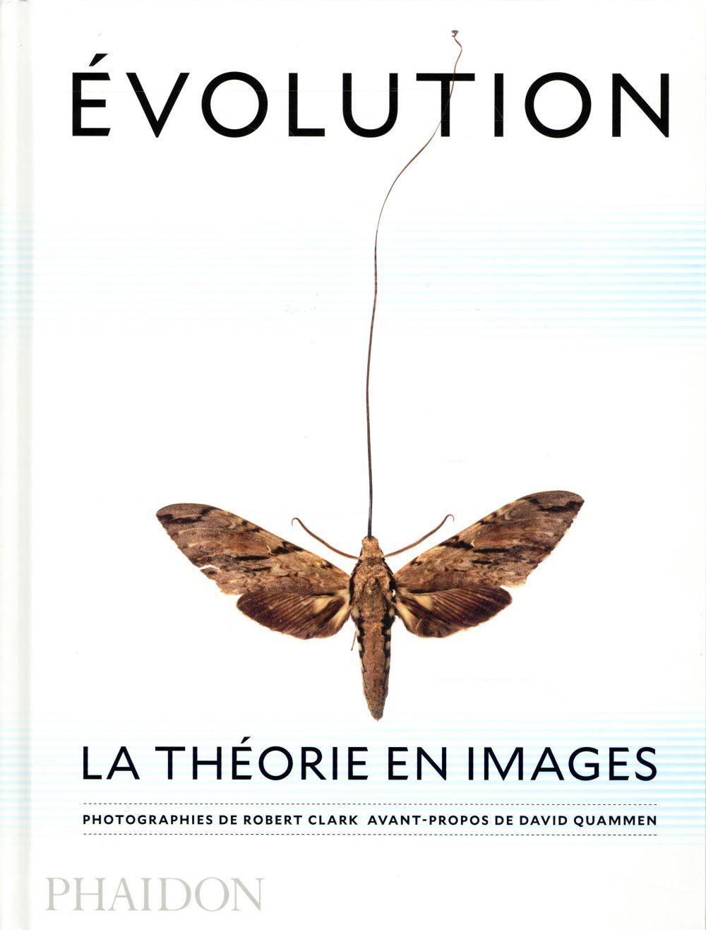 évolution ; la théorie en images