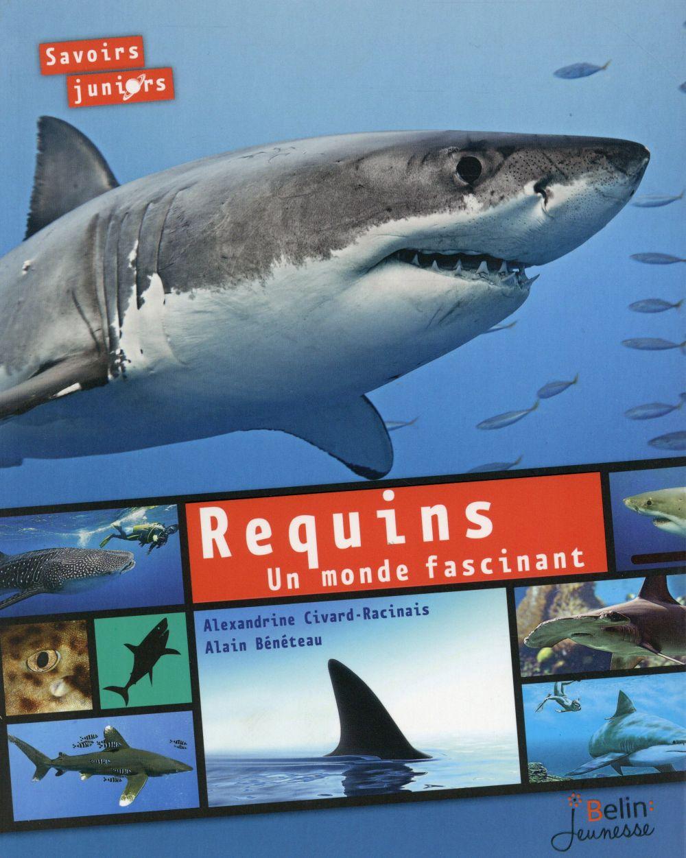 Requins ; un monde fascinant