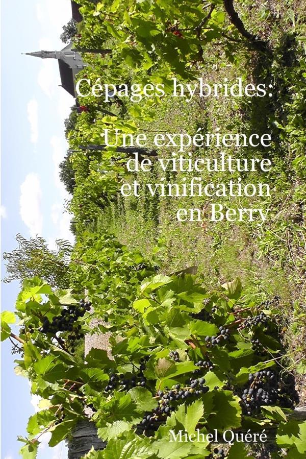 Cépages hybrides : une expérience de viticulture et vinification en Berry
