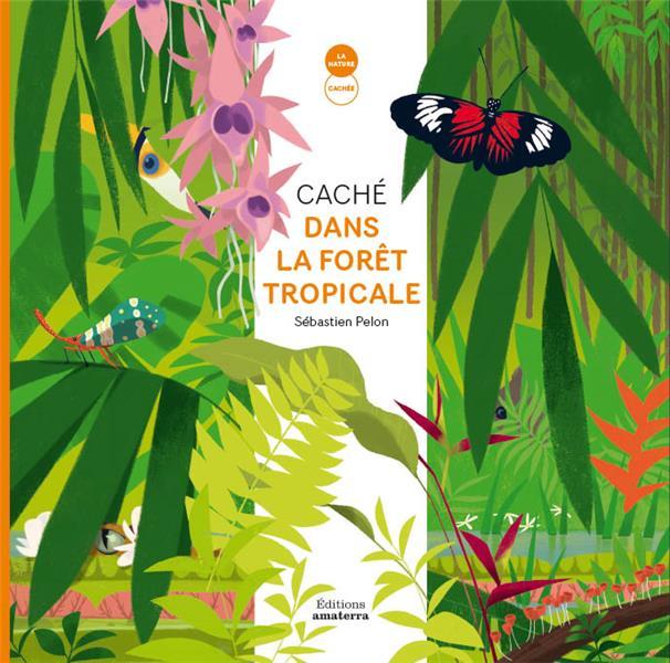 Caché dans la forêt tropicale