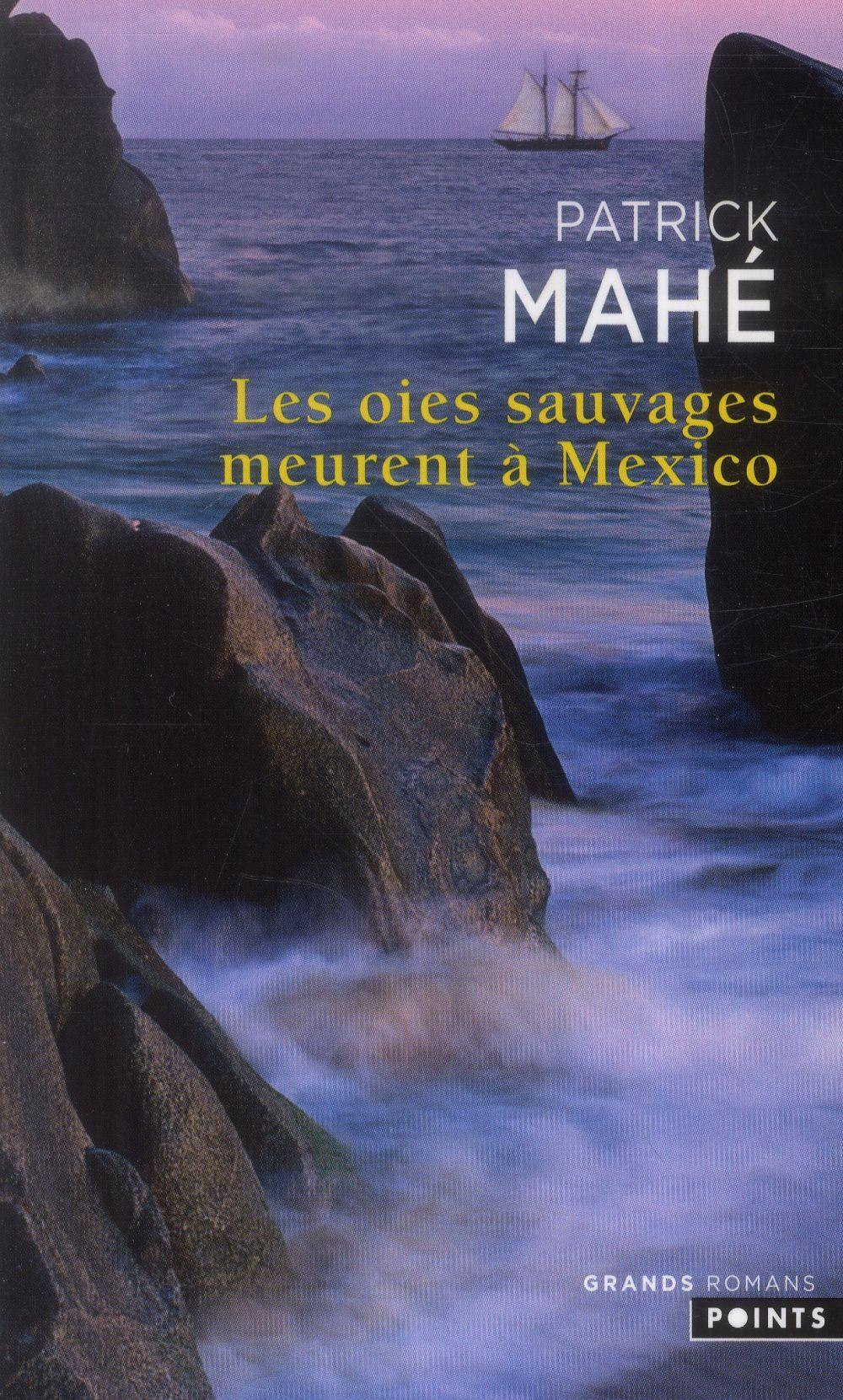Les Oies Sauvages Meurent A Mexico