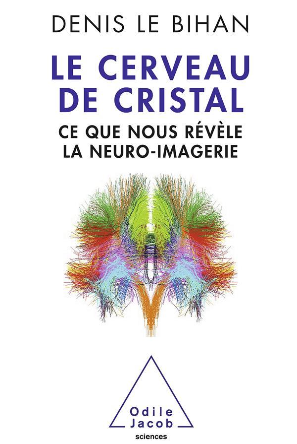 Le cerveau de cristal ; ce que nous révèle la neuro-imagerie
