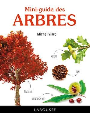 mini-guide des arbres