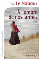 Vente Livre Numérique : A l'ombre de nos larmes  - Éric Le Nabour