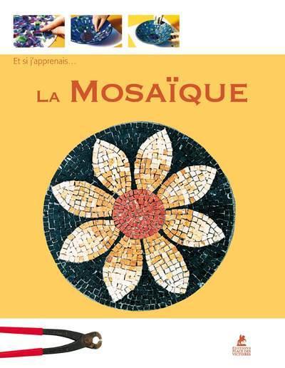 Et Si J'Apprenais T.13 ; La Mosaique