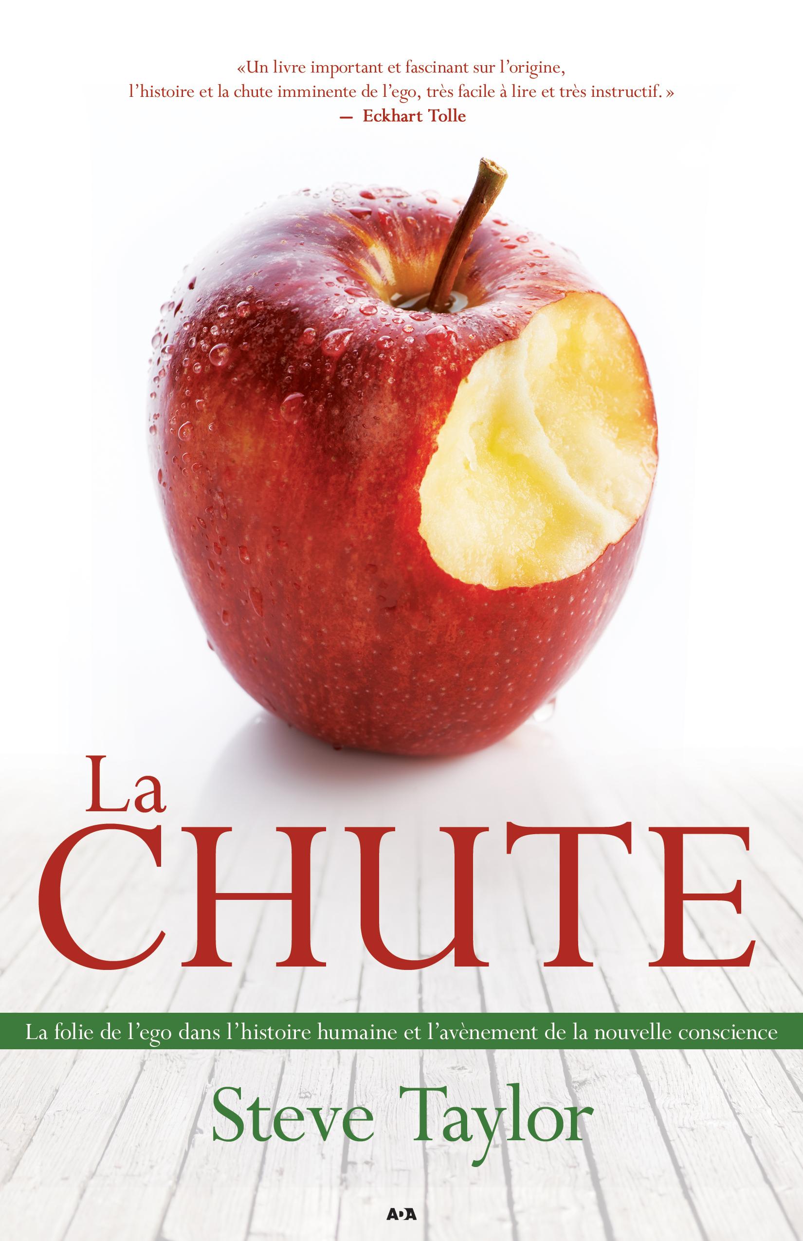 Vente EBooks : La Chute  - Steve Taylor