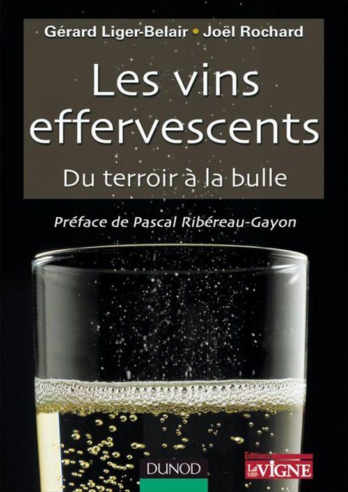Les vins effervescents ; du terroir à la bulle