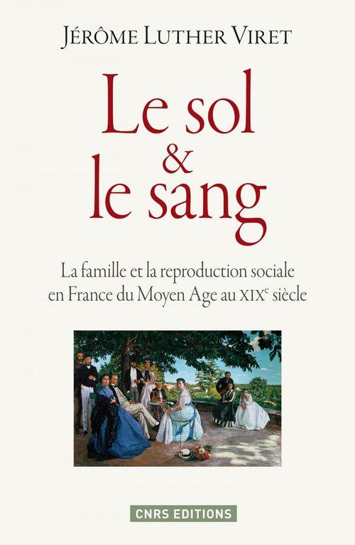 le sol et le sang ; la famille et la reproduction sociale en France du Moyen Age au XIXe siècle
