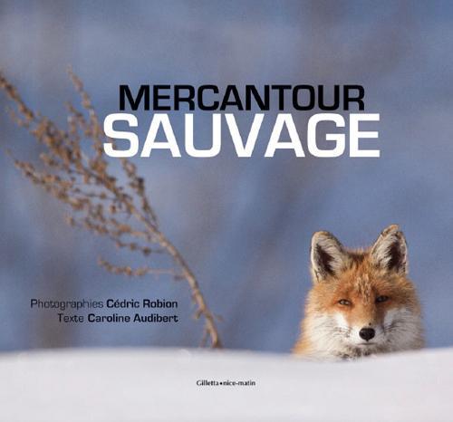 Mercantour sauvage