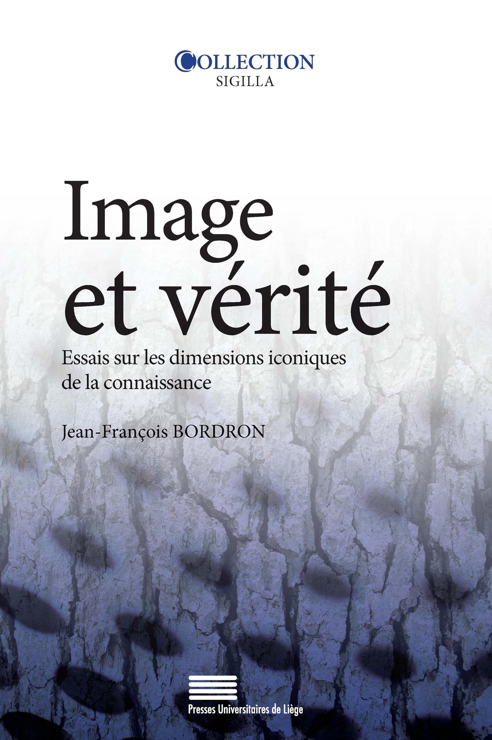 Image et vérité ; essais sur les dimensions iconiques de la connaissan