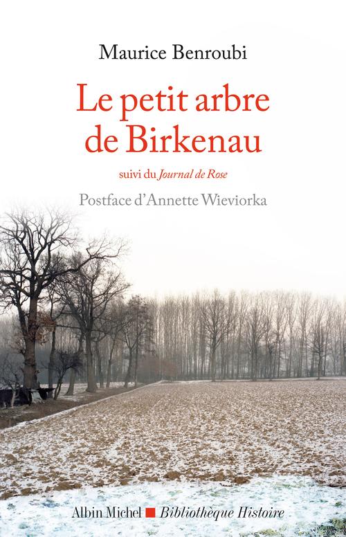 Le petit arbre de Birkenau ; journal de Rose