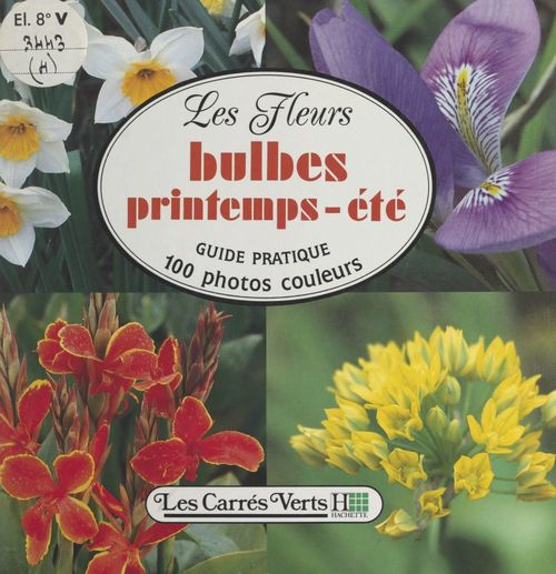 Les fleurs (4): bulbes printemps-été
