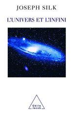 Vente EBooks : L' Univers et l´Infini  - Joseph Silk