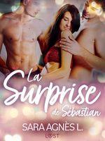 Vente Livre Numérique : La Surprise de Sébastian - Une nouvelle érotique  - Sara Agnès L.