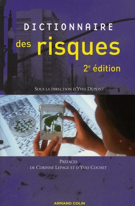 Dictionnaire Des Risques (2e Edition)
