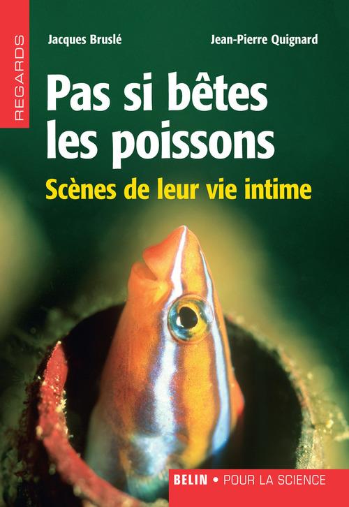 Pas si bêtes les poissons. Scènes de leur vie intime