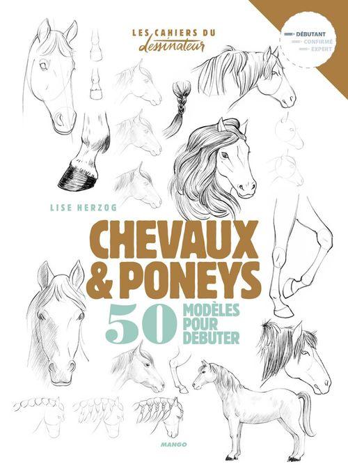 Chevaux et poneys ; 50 modèles pour débuter