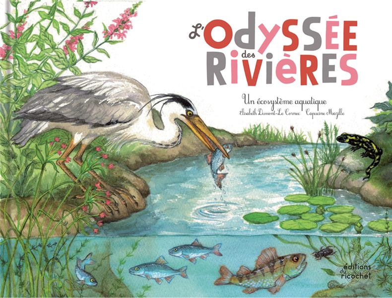 L'ODYSSEE DES RIVIERES  -  UN ECOSYSTEME
