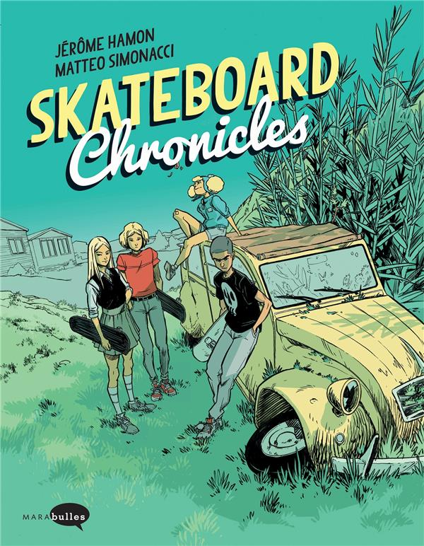 Skateboard chronicles
