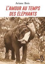 Vente EBooks : L'Amour au temps des éléphants  - Ariane Bois