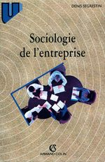 Sociologie de l'entreprise  - Denis Segrestin